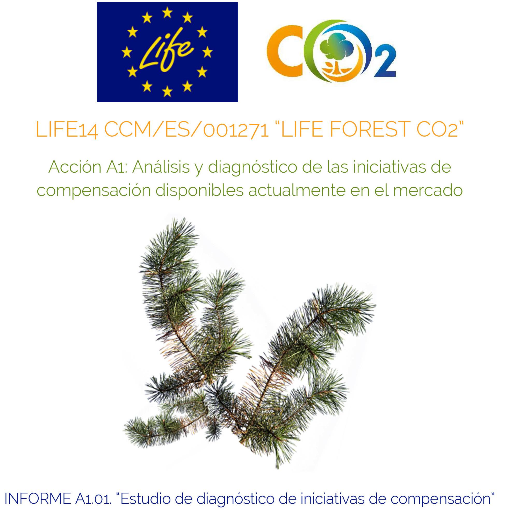 Acción A1_Informe