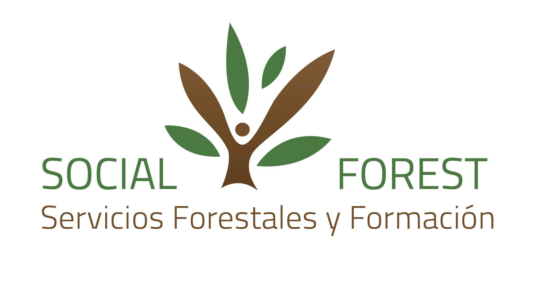 LIFE FOREST CO2 Y SOCIALFOREST, ALIADOS POR LA GESTIÓN FORESTAL SOSTENIBLE Y LA MITIGACIÓN DEL CAMBIO CLIMÁTICO