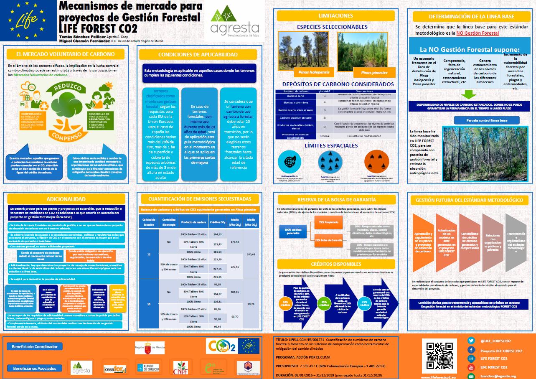 EL PROYECTO LIFE FOREST CO2 CONTINÚA CON SU AGENDA: RESUMEN DE ACTIVIDADES